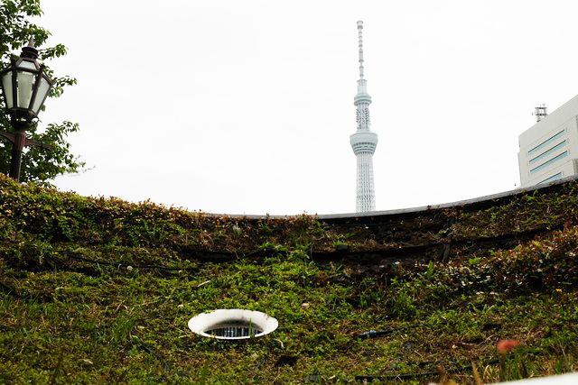 GTS観光アートプロジェクト06グリーンプラネット(台東区:隅田公園)