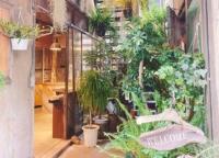 上野にある工務店が手掛ける緑とクリエイティブな空気に囲まれた個性派カフェ「ルート ブックス (ROUTE BOOKS)」